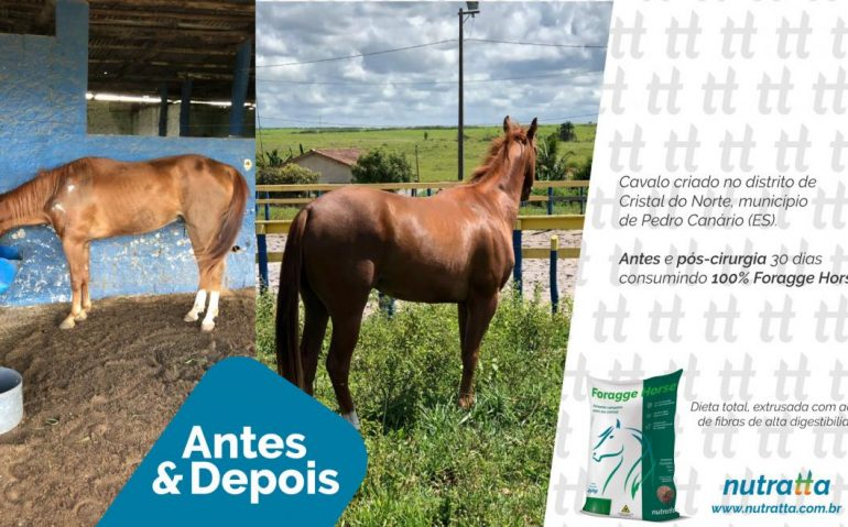 ANTES-E-DEPOIS-CRISTAL-DO-NORTE-1170x658